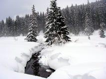 neige couverte d'horizontal Photos stock