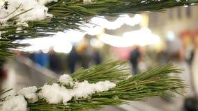 Neige d'arbre de Noël banque de vidéos