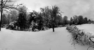 Neige d'hiver Photographie stock libre de droits