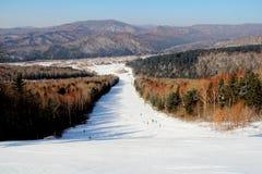 Neige d'hiver Image libre de droits