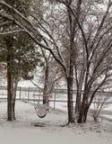 Neige d'hiver de désert image stock