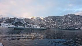 Neige d'hiver de matin photos libres de droits