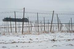 Neige d'hiver de soutien de cultivateur de bière de plantation de ferme de production de champ d'houblon photos stock