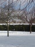 Neige d'hiver en parc dans Kent, Angleterre Photos stock