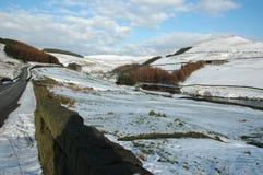 Neige dans l'hiver Photos libres de droits