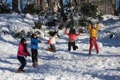 Neige dans le Central Park photographie stock libre de droits