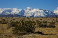 Neige dans le désert photographie stock