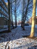 Neige dans le voisinage images libres de droits
