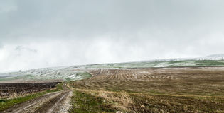 Neige dans les domaines de blé fraîchement semés Photo stock