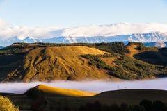 Neige de brume de vallée d'arbres de montagnes  Image libre de droits