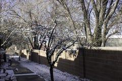 Neige de début de la matinée Image stock
