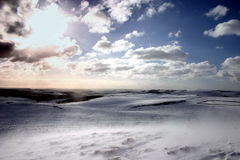 Neige de dérive au soleil Image stock