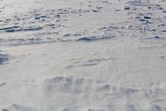 Neige de dérive rampant le long d'un champ ouvert Photo libre de droits