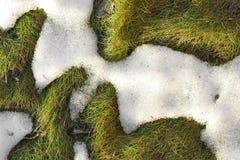 Neige de fonte Photo libre de droits