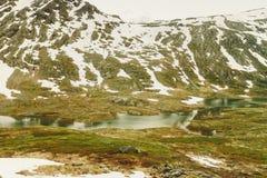 Neige de fonte en montagnes norvégiennes Images libres de droits