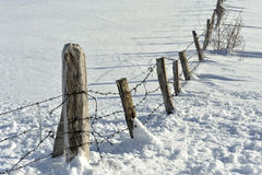 neige de groupe Photo stock