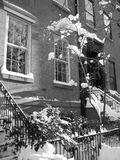 Neige de l'hiver à Brooklyn image stock
