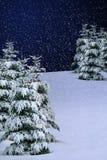 Neige de l'hiver photo stock