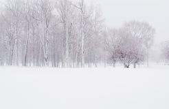 Neige de l'hiver Photos stock