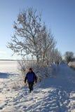 Neige de l'hiver au Royaume-Uni Photo libre de droits