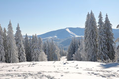 neige de montagne Image libre de droits