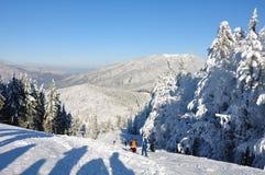 neige de montagne photo stock