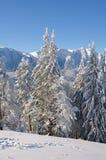 neige de Noël photographie stock