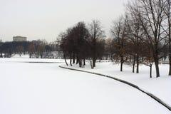 Neige de parc de ville d'hiver Photographie stock libre de droits