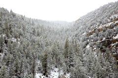 Neige de ressort du Nevada Etats-Unis dans les montagnes images libres de droits