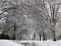 Neige de ressort de surprise dans le Washington DC Photo libre de droits