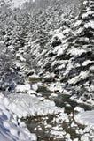 Neige de rivière de montagne pendant l'hiver Photos libres de droits