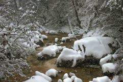 Neige de rivière de montagne pendant l'hiver Photographie stock