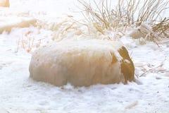 Neige de roche photo libre de droits