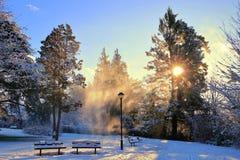Neige de soufflement au pays des merveilles magique d'hiver le long du parc de voie d'eau de gorge, Victoria, B C photographie stock