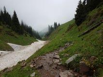 Neige des avalanches en gorge images stock