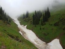 Neige des avalanches en gorge photos stock
