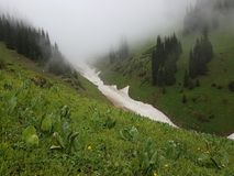 Neige des avalanches en gorge image stock