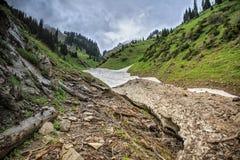 Neige des avalanches en gorge photographie stock libre de droits