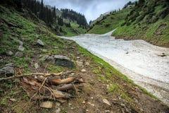 Neige des avalanches en gorge photo stock