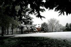 Neige en avril Photo libre de droits