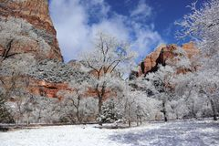 Neige en Zion Canyons ! L'Utah photo libre de droits