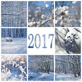 2017, neige et carte de voeux de paysages d'hiver Photo stock