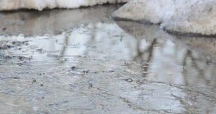 Neige et glace de fonte clips vidéos
