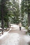 Neige et horizontal de l'hiver Photo stock