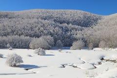 Neige et montagne Image libre de droits
