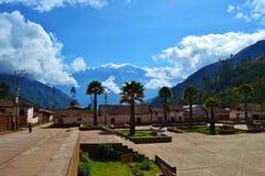 Neige et palmiers Images libres de droits