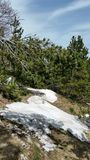 Neige et soleil Photo libre de droits