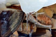 Neige fondue sur le plan rapproché en bois image libre de droits