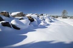 neige fraîche couvrante Photographie stock