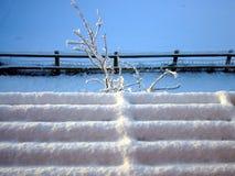 Neige, l'hiver, décembre, Noël, froid Image libre de droits